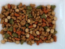 Dry cat food. Dry cat food. The texture of dry food. Macro. stock images