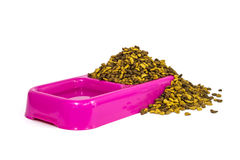 Dry cat food and water in pink bowl Stock Images