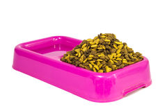 Dry cat food and water in pink bowl Stock Photography