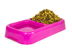Dry cat food and water in pink bowl Royalty Free Stock Photo