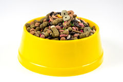 Dry cat food in yellow bowl isolated on white background Stock Photo