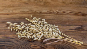 Dry cereal ears on a wooden table. Decorative oat on brown vintage background in HD ratio 16x9 royalty free stock images