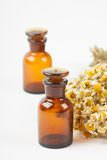 Dry chamomile and a bottles Stock Image