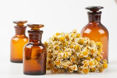 Dry chamomile and a bottles Royalty Free Stock Photo