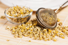 Dry chamomile with tea strainer and glass dish Stock Photos