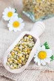 Dry chamomile tea in wooden scoop, fresh chamomile flowers and glass jar on background Stock Images