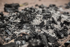 Dry charcoal and Ash Stock Image