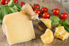 Dry cheese Royalty Free Stock Image