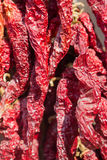 Dry chili Royalty Free Stock Images
