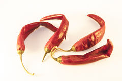 Dry chili isolated. Few dry chilis, isolated on white background Stock Photography