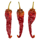 Dry chili pepper isolated. Dried vegetable. Group of peppers. Dry chili pepper isolated. Dried vegetable. Group of peppers Royalty Free Stock Image