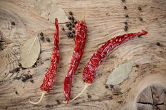 Dry chili pepper Royalty Free Stock Image
