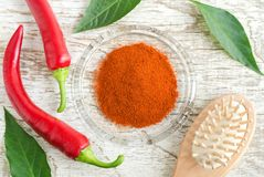 Dry chili pepper powder and fresh red chili peppers for preparing diy hair mask against hair loss. Baldness, alopecia natural remedy. Ingredients of homemade royalty free stock image