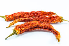 Dry chili peppers Stock Photography