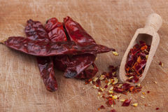 Dry Chili Royalty Free Stock Image