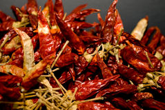 Dry chili strong Royalty Free Stock Photos
