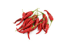 Dry Chili Royalty Free Stock Photo