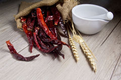 Dry chili on wood Stock Photography