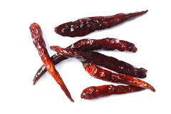 Dry chilli on white background Stock Image