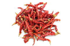 Dry chillies Royalty Free Stock Images