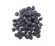 Dry chokeberry stock photos