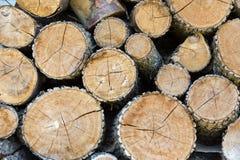 Dry chopped firewood Royalty Free Stock Photo