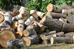 Dry chopped firewood logs in pile Stock Images