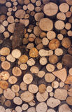 Dry chopped firewood logs Stock Photos