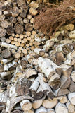 Dry chopped wood Royalty Free Stock Photography