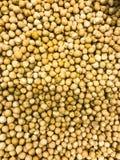 Dry Cicer arietinum, scoop for cereals. Studio Photo stock photo