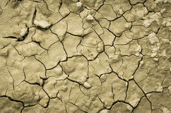 Dry clay soil Stock Images