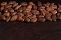 Dry cocoa seeds background Stock Images