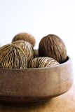 Dry coconut. For home decoration Stock Images