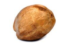 Dry coconut Royalty Free Stock Photo