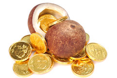 Dry coconut with gold coins Stock Image