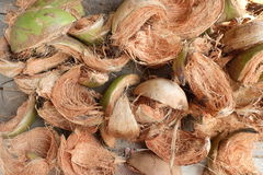 Dry coconut husk Stock Photos