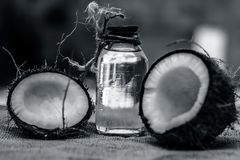 Coconut & Coconut oil royalty free stock image