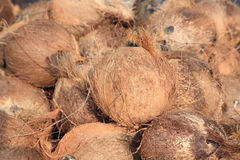 Dry  coconut shells at market place Stock Photo