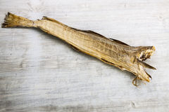 Dry cod fish Royalty Free Stock Images