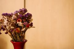 Dry flowers in a red vase Stock Photos