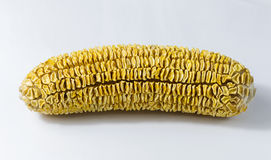 Dry corn closeup on white background. Agriculture product Stock Photo