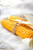Dry Corn Cobs Royalty Free Stock Image