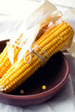 Dry corn cobs in a bowl Stock Photos
