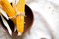 Dry corn cobs in a bowl Royalty Free Stock Image