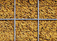 Dry Corn Storage Stock Photos