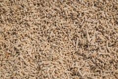 Dry corncobs. Stock Photo