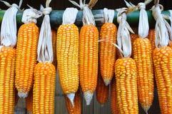 Dry Corns Stock Photo