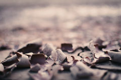 Dry crack background Royalty Free Stock Photography
