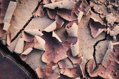 Dry crack background Royalty Free Stock Photo