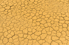 Dry crack earth texture Stock Photos
